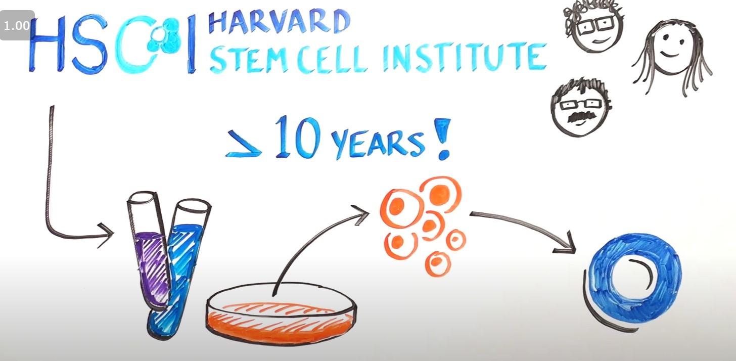 幹細胞治療